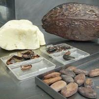 Museum van Cacao en Chocolade