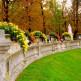 Bloemen in de Jardin du Luxembourg